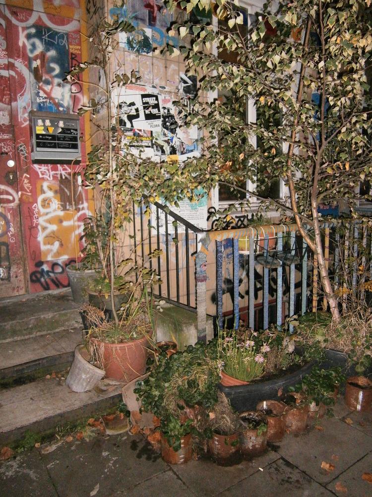 Anica - Urban Garden